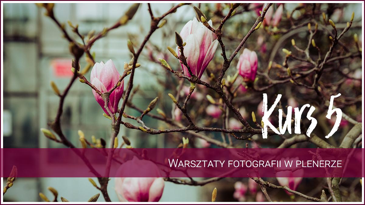 Warsztaty fotograficzne Jelenia Góra